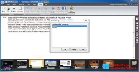 Skjermbilde Snagit Windows 8