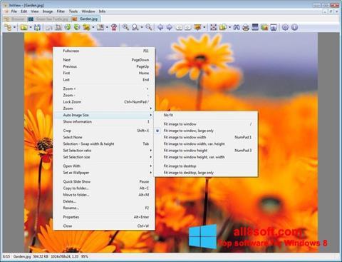 Skjermbilde XnView Windows 8