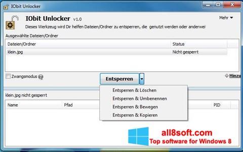 Skjermbilde IObit Unlocker Windows 8