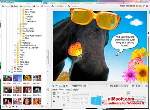 Skjermbilde PhotoScape Windows 8
