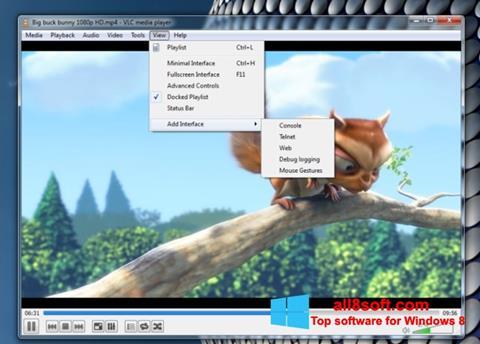 Skjermbilde VLC Media Player Windows 8